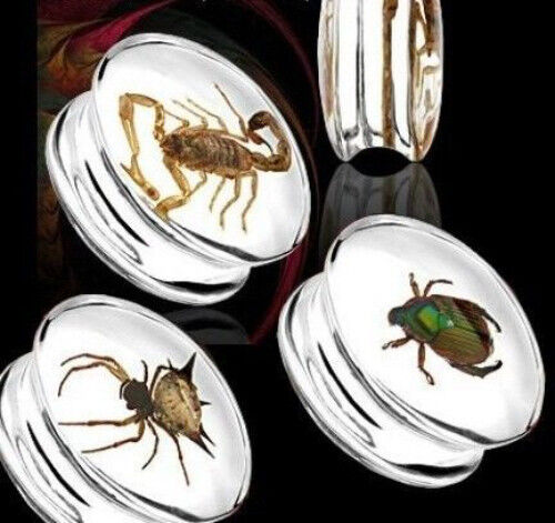 Bug Encased Resin Plugs Scorpion Beetle Spider 16mm