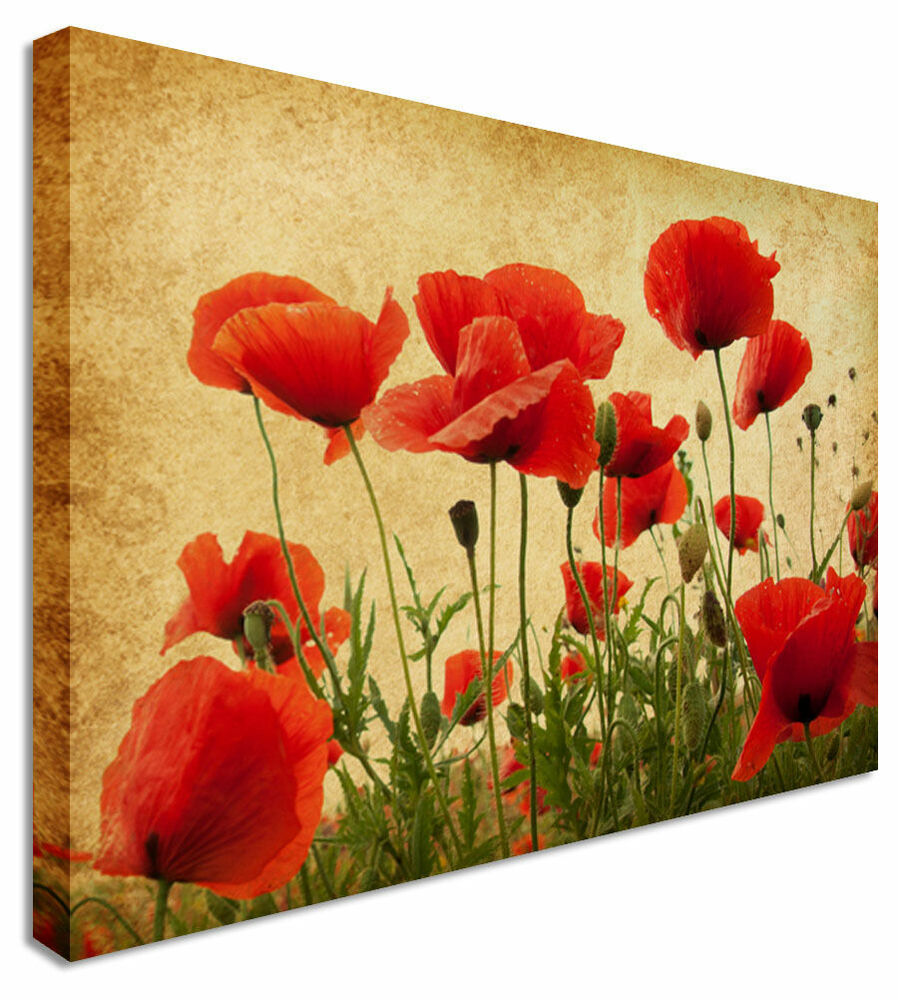 Canvas Wall Art Pictures For