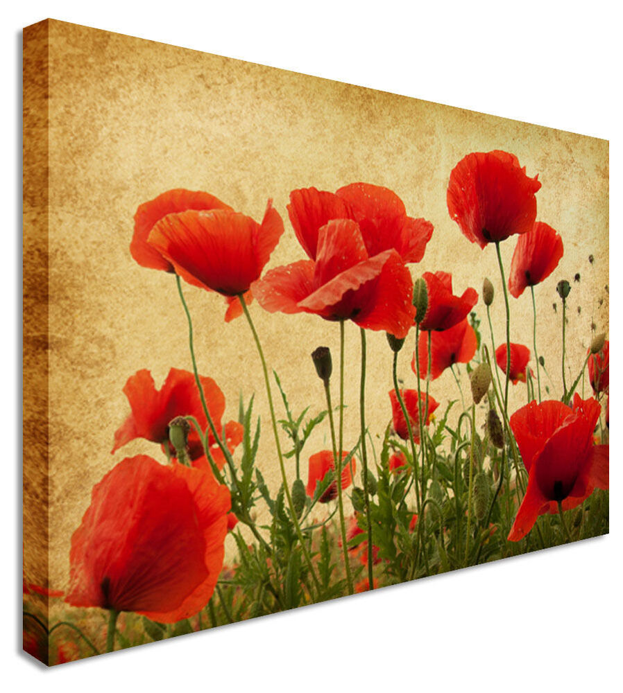 Vintage Sepia Poppy Field - Canvas Wall Art Pictures For Home ...