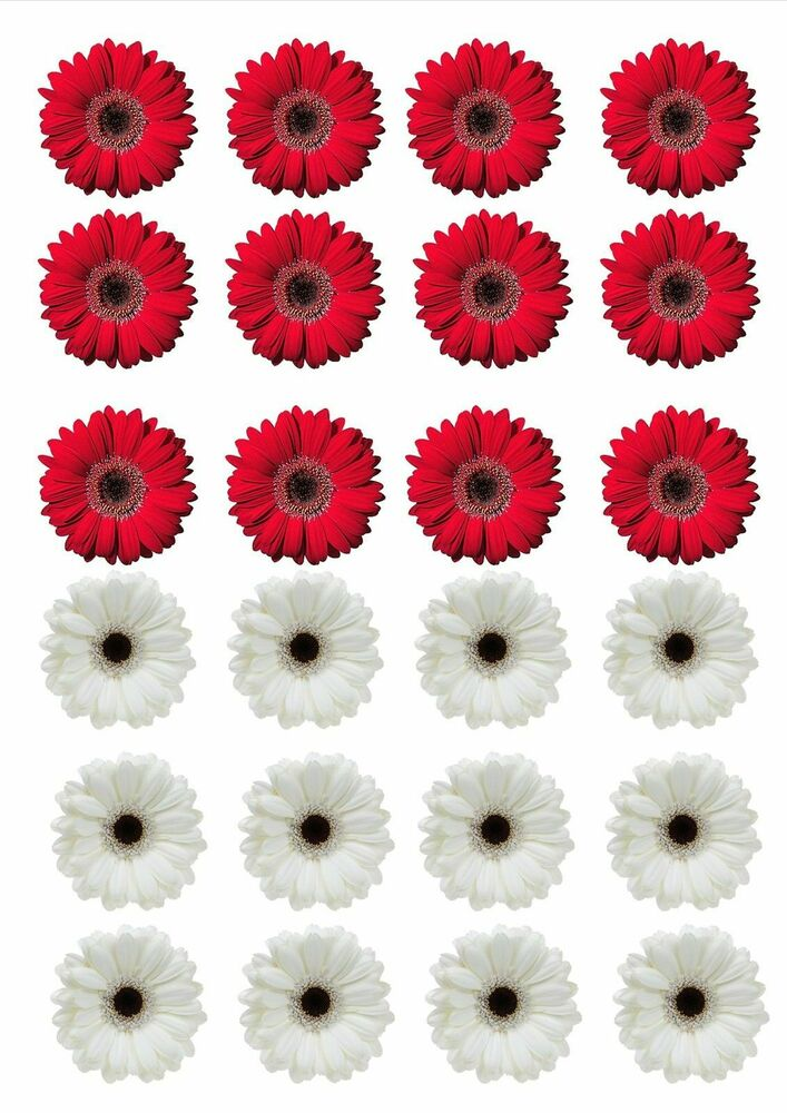 24xRED & WHITE GERBERA FLOWERS EDIBLE CUPCAKE TOPPERS ...