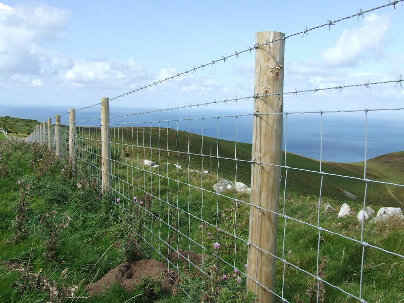 M roll of l galvanised uk made stock fencing
