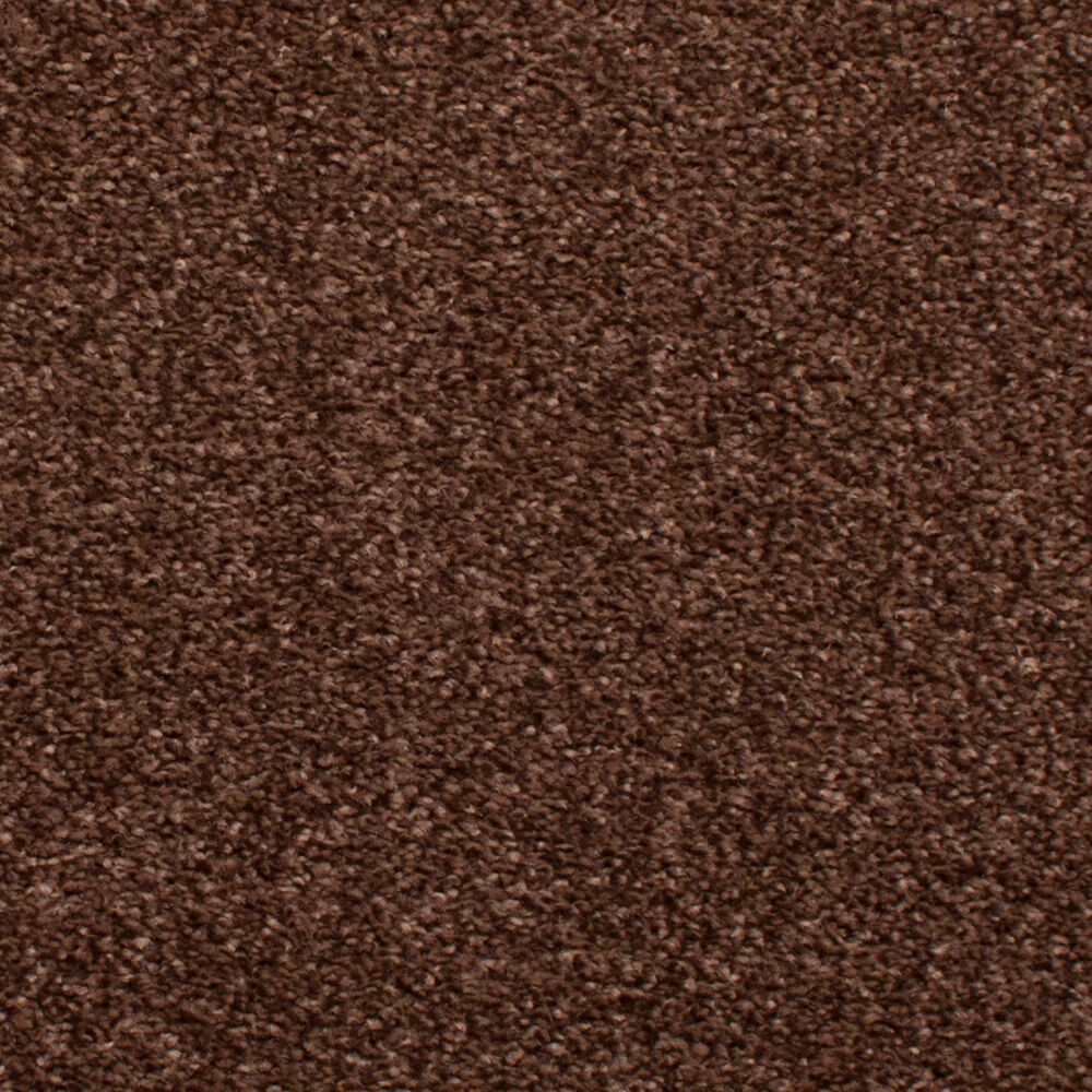 Chocolate brown hessian back budget saxony carpet cheap for Cheap cheap carpet