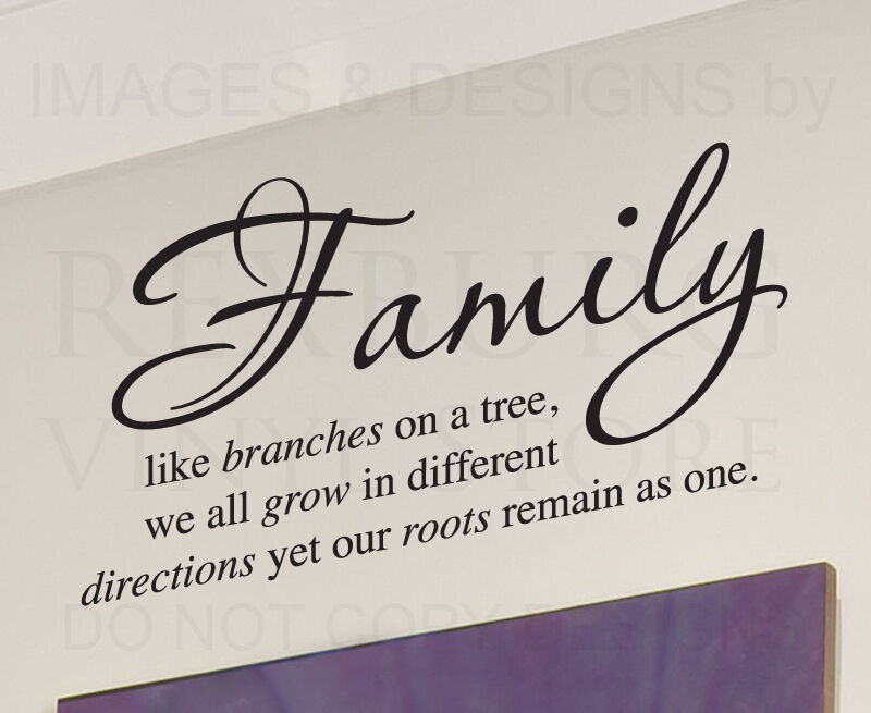 Vinyl Wall Art Quotes Family : Wall decal sticker quote vinyl art lettering family like