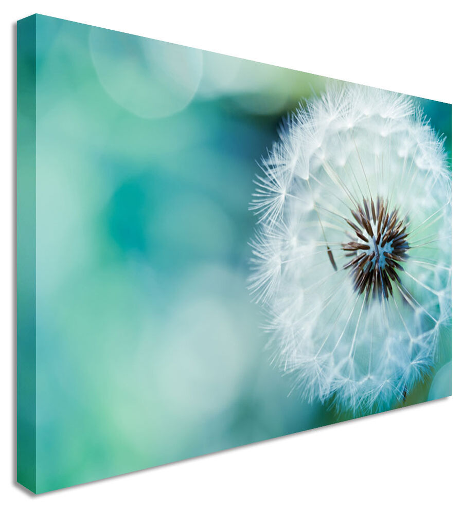 Large Dandelion Make Blue Wishes Flower Canvas Wall Art