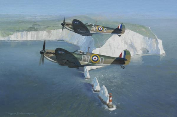 Image result for painting of a spitfire