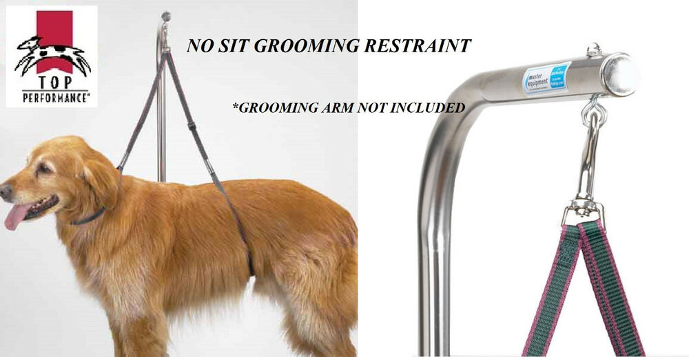 Dog Grooming No Sit Lie Down Restraint Harness System