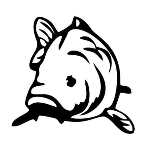 Fish Car Van Laptop Sticker Vinyl Decal Carp Fishing Ebay