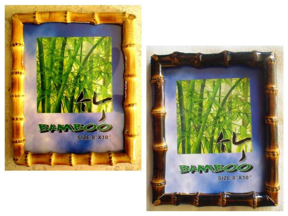 """Real Bamboo Root Photo/Picture Frame 8"""" x 10"""" -Choice of ..."""