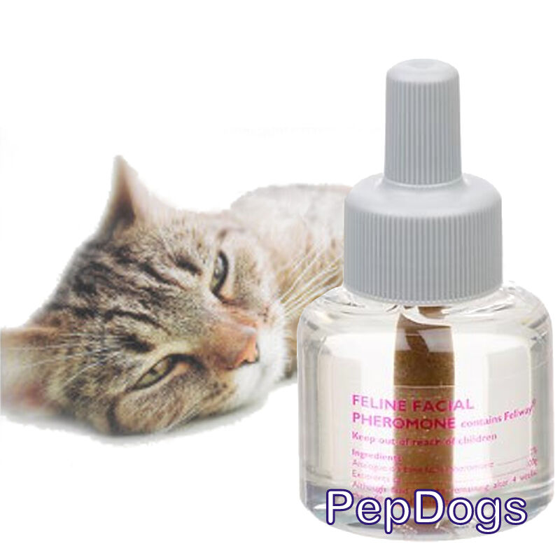 pet dp pack comfort refills ca supplies amazon calming comforter zone diffuser multicat for cat feliway