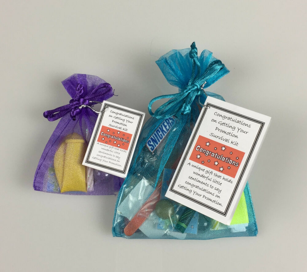 congratulations on getting your promotion survival kit novelty fun congratulations on getting your promotion survival kit novelty fun keepsake gift