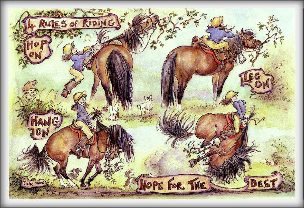 Quot 4 Rules Of Riding Quot Funny Horse Amp Equestrian Greetings