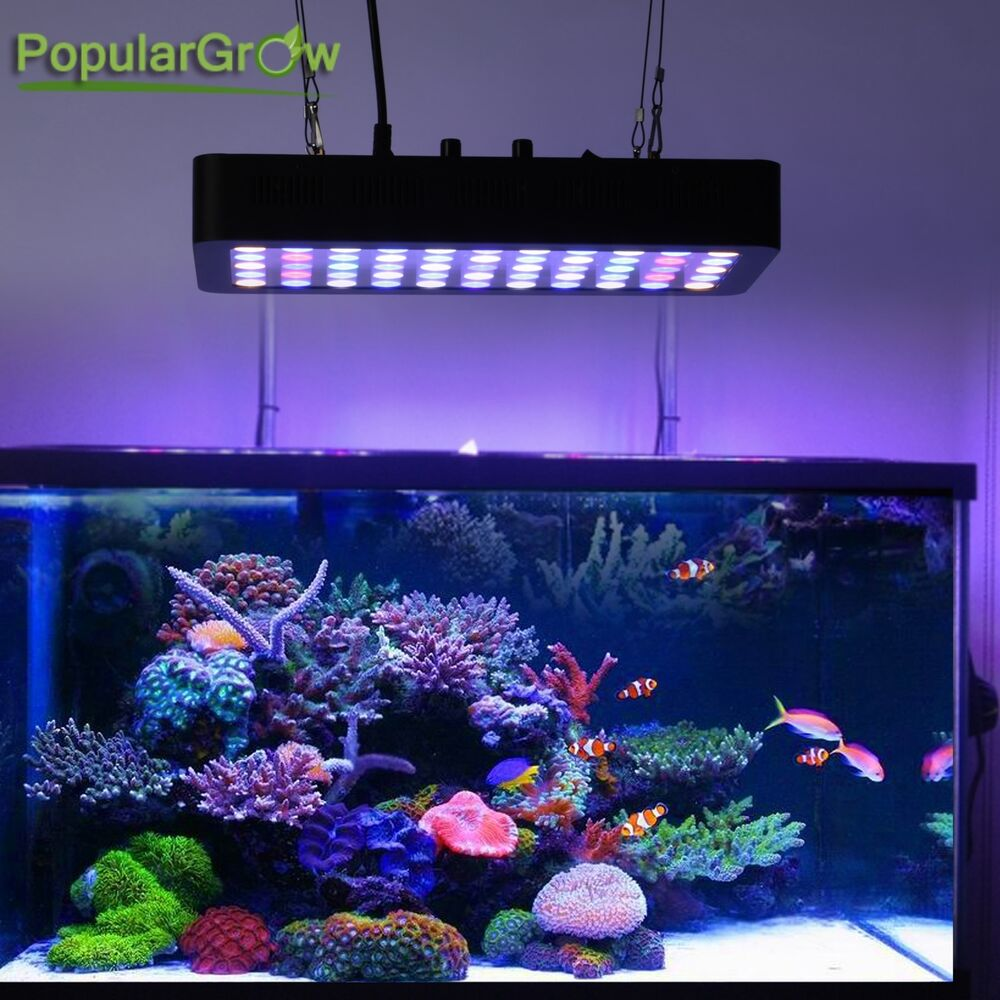 populargrow 165w led aquarium beleuchtung dimmable f r. Black Bedroom Furniture Sets. Home Design Ideas