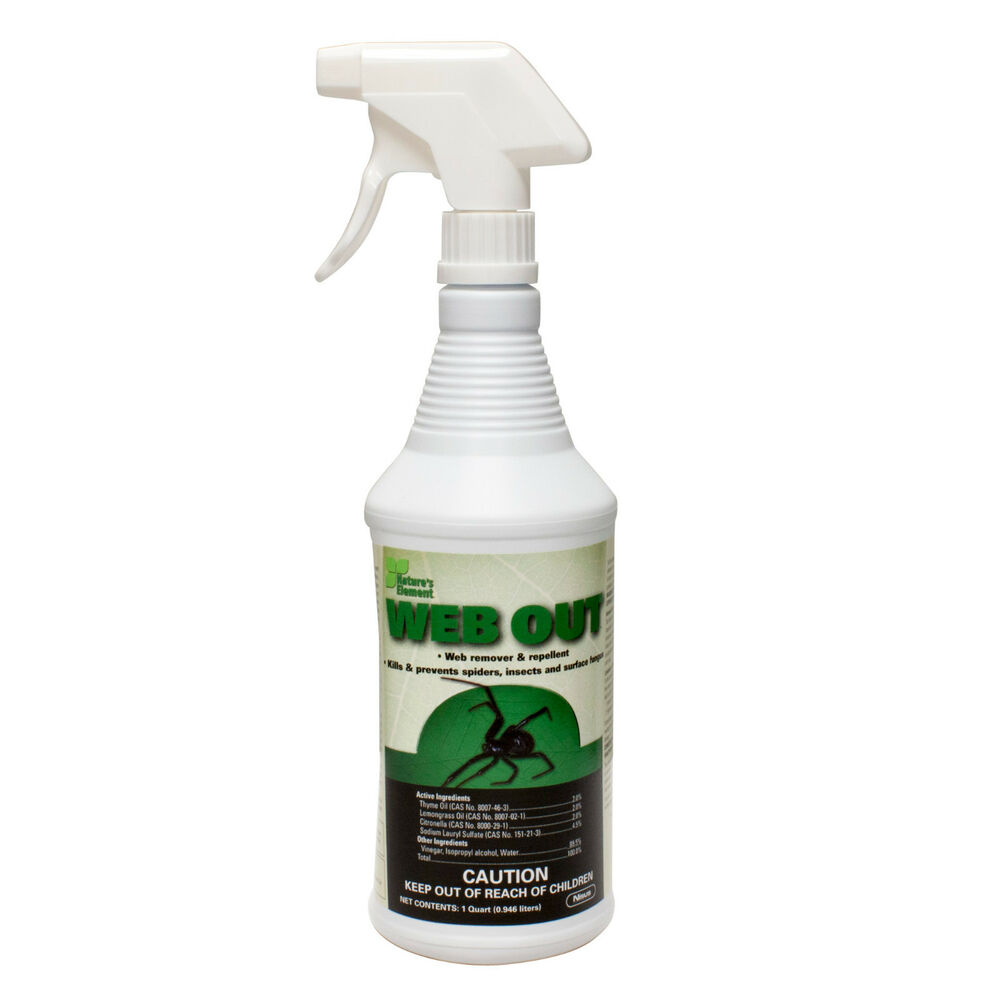 Natural Spider Spray For Home