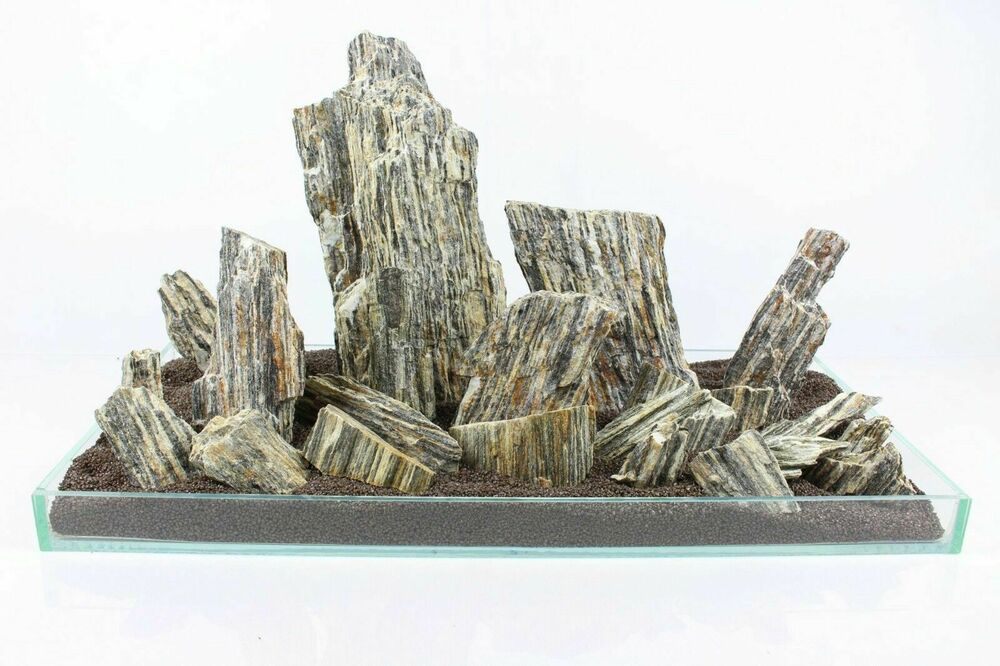 5 kg natural wood stone for an aquarium aquascaping for Aquarium stone decoration