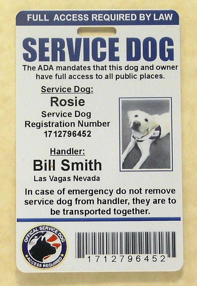 Get My Dog Certified As A Service Dog
