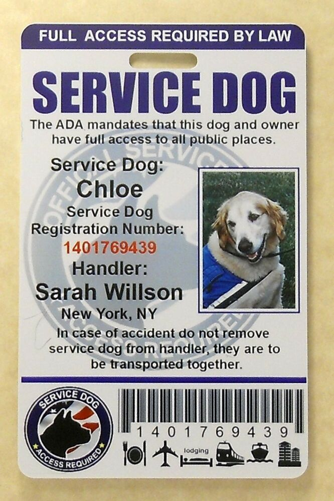 Service Dog Id Card For Service Animal Professional Ada