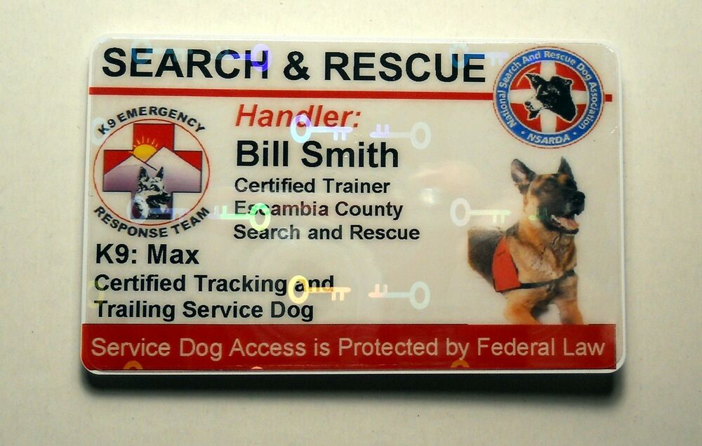 Holographic Search And Rescue Service Dog Id Badge Custom Card