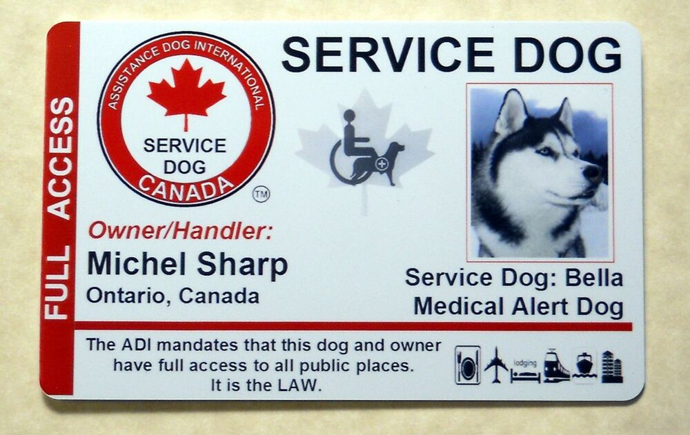 Service Dog Verification