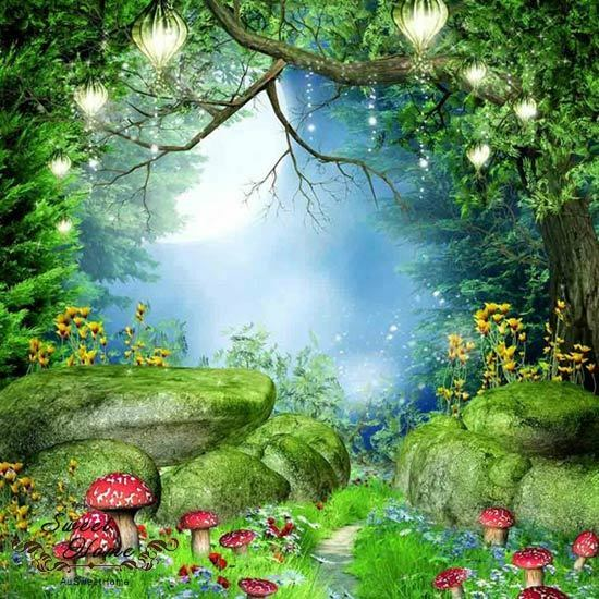 Mysterious Forest Full Wall Mural Large Print Decal