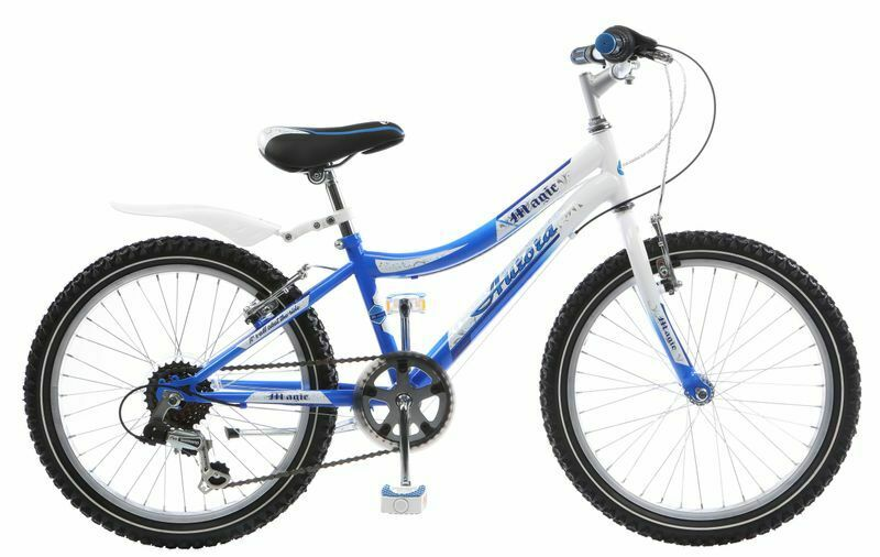 20 20 zoll jugend fahrrad rad bike mountainbike. Black Bedroom Furniture Sets. Home Design Ideas