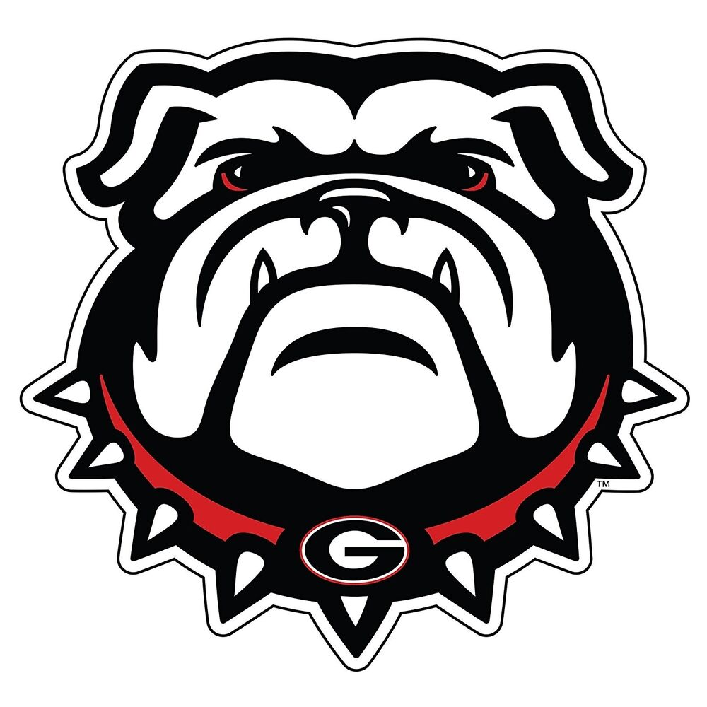 Uga Large New Georgia Bulldog Decal Ebay