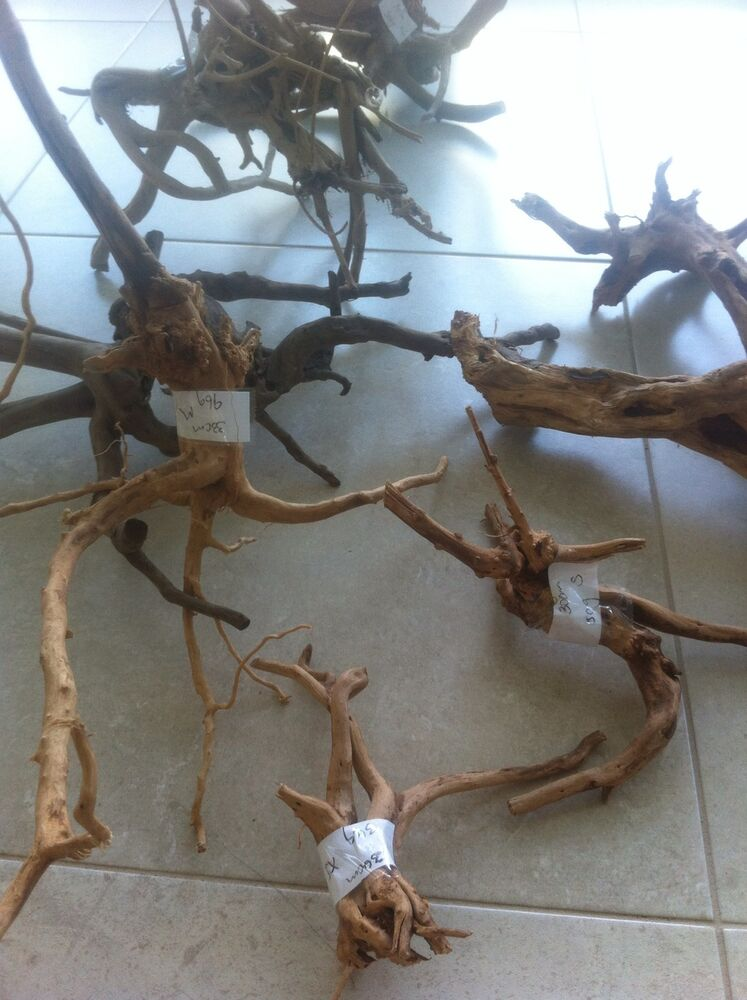 Aquarium aquatic fish tank natural driftwood gold vine ebay for Fish tank driftwood
