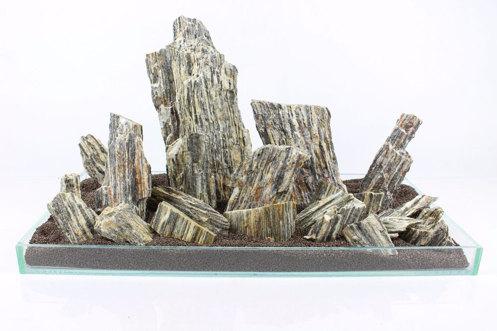 25 kg natural wood stone for an aquarium aquascaping for Natural fish tank
