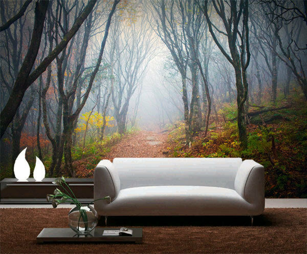 Into Mist Forest Nature Fog 3D Full Wall Mural Photo