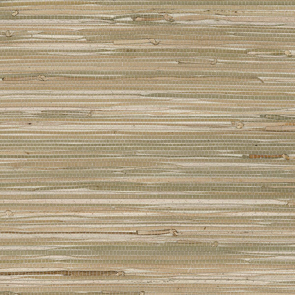 Neautral Colors: Neutral Colors Unpasted Real Textured Grasscloth Wallpaper