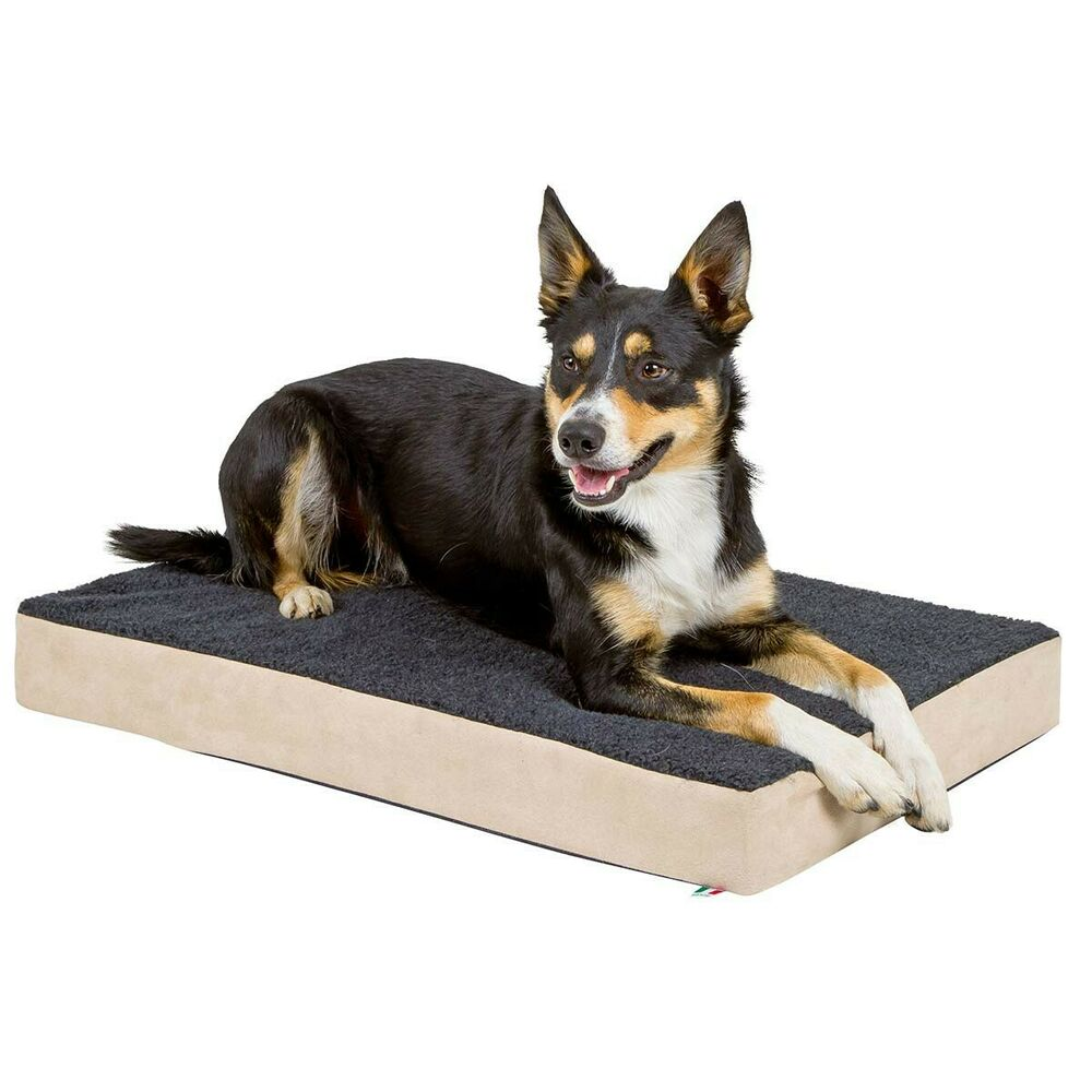 kerbl orthop dische hunde matratze memory foam hundebett hundekissen ebay. Black Bedroom Furniture Sets. Home Design Ideas