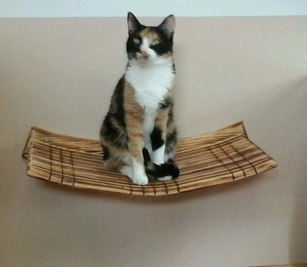 Wall Mounted Large Curvy Cat Perch Buy 3 And Get 1 Free
