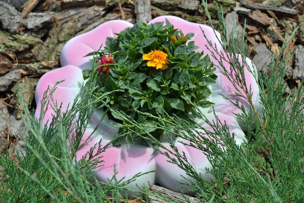 Mold For Concrete Decorative Flower Garden Protection From