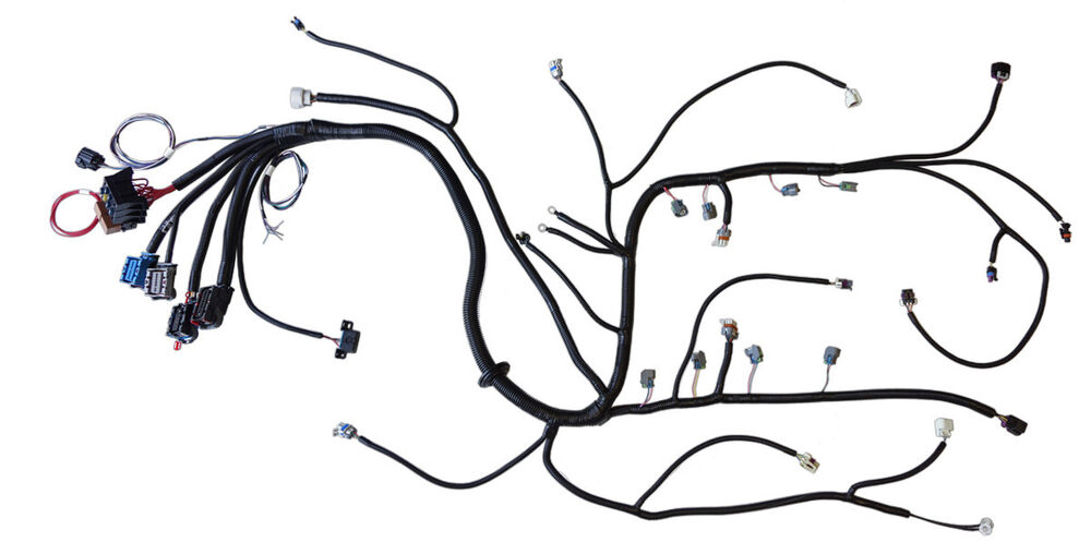 2005   t56 standalone wiring harness