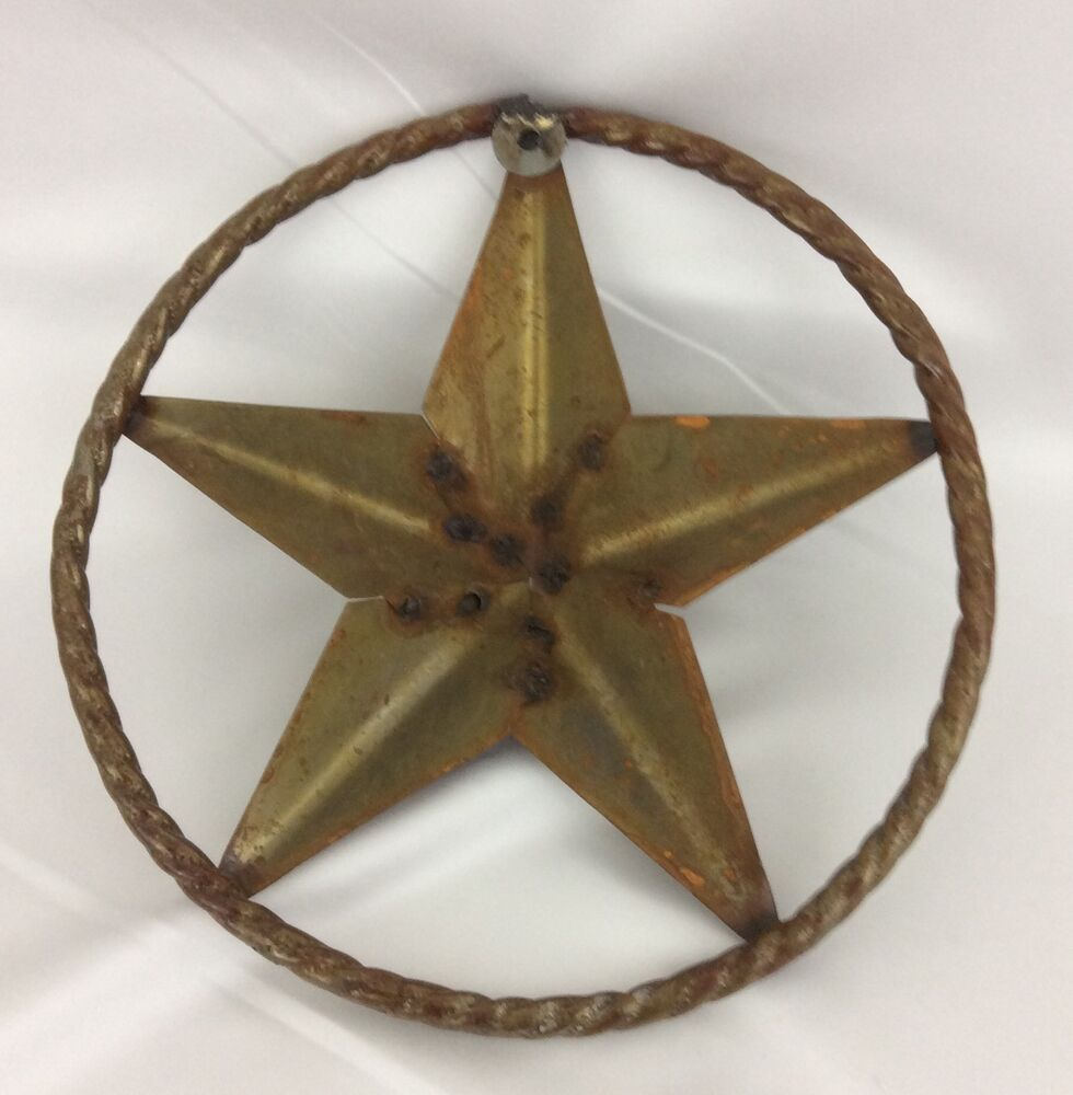 Texas Star Metal Wall Art Round Plaque Medallion Rope 12