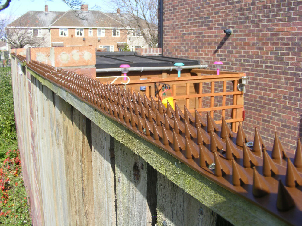Garden security fence wall spikes six colours ebay - How to keep intruders out of your garden ...