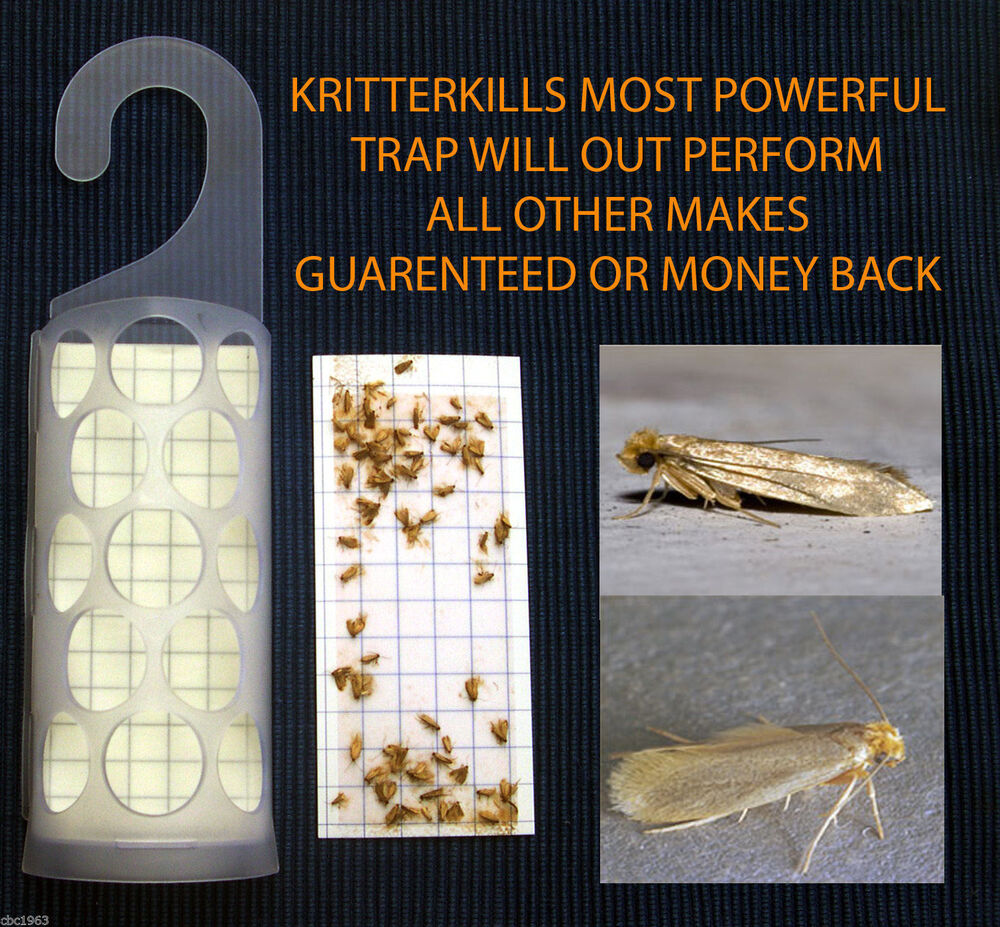1 X Kritterkill Clothes Moth Trap Pheromone Use By Sept