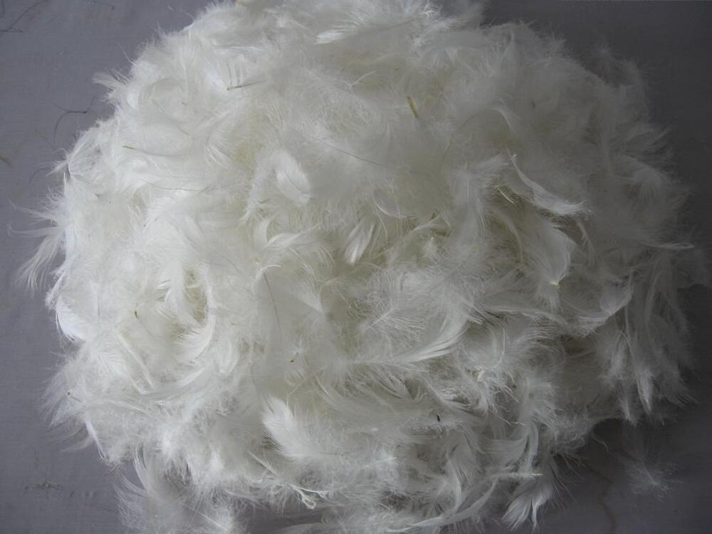 1 kg loose clean feathers for pillows toy stuffing for Duck or goose feather pillows which is better