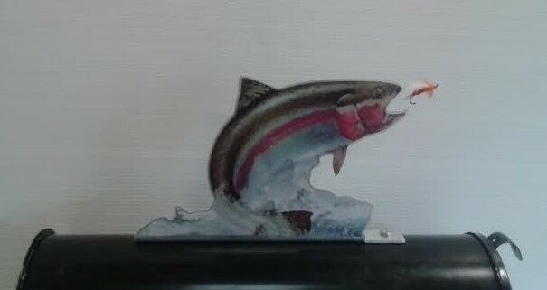 Rainbow Trout Fish Mailbox Topper Ebay