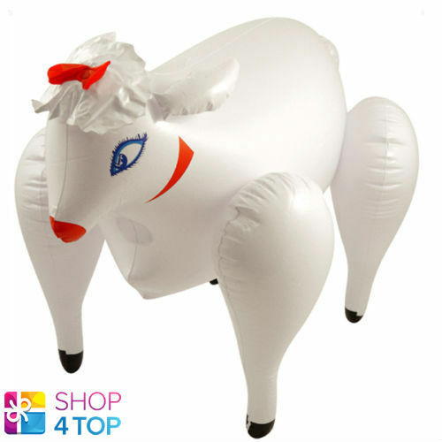 Adult blow up toys