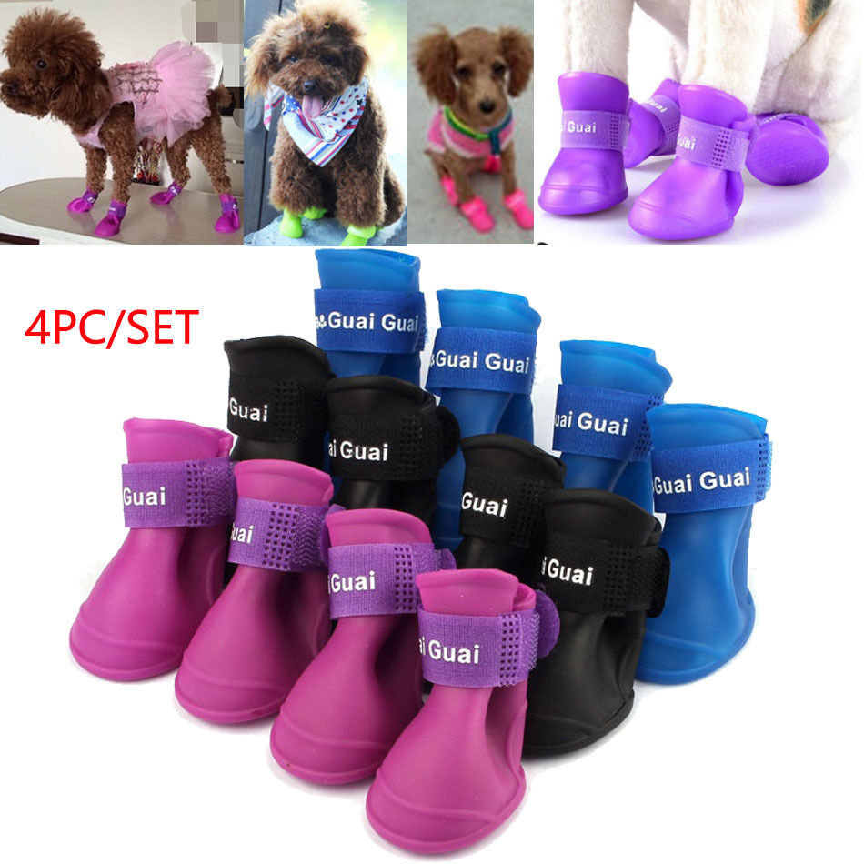 Booties For Dogs Uk