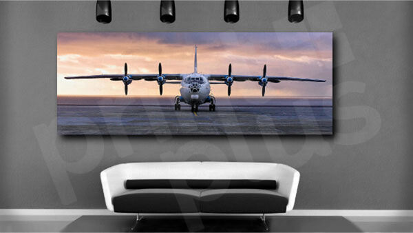 Antonov Aircraft Plane Airplane Propeller Canvas Art