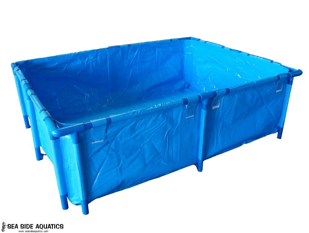 Shark pond pool 415 gallon capacity 59 x 59 x 27 6 ebay for Koi tank size