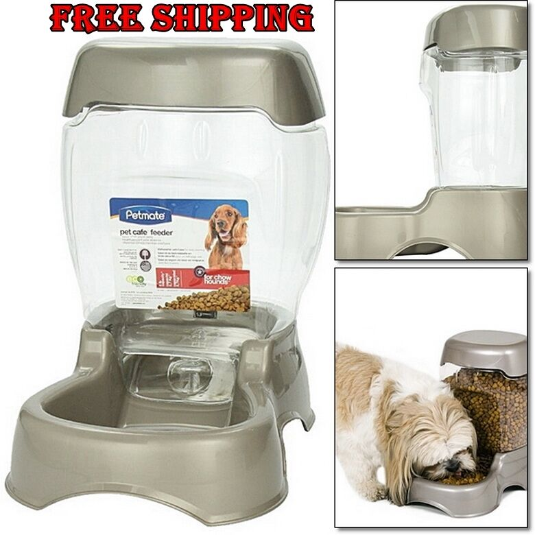 Automatic Food Dispenser For Dog