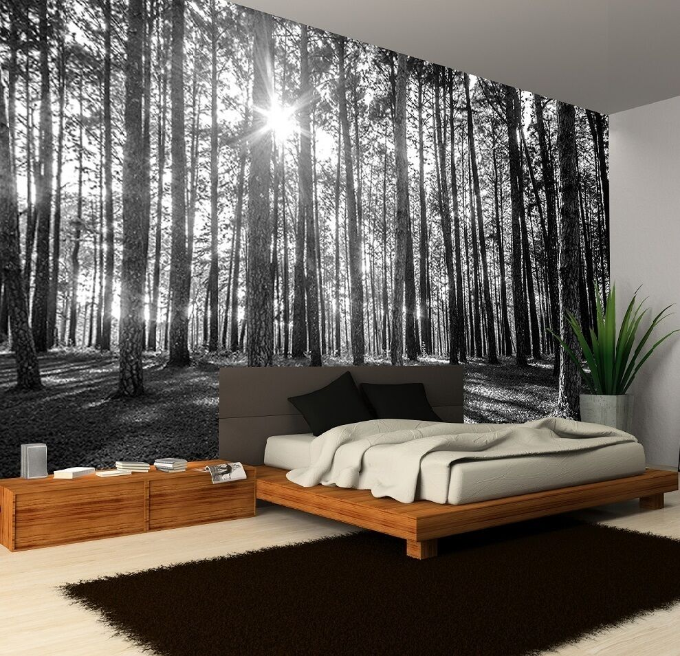 B&W SUNNY FOREST MORNING TREES Photo Wallpaper Wall Mural