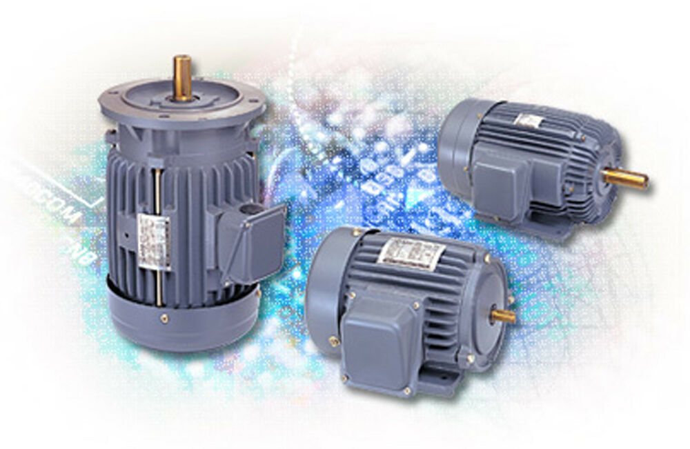 Adlee ac iec induction motor aevf motor 1 2 hp 4p 230 460 for 1 2 hp induction motor
