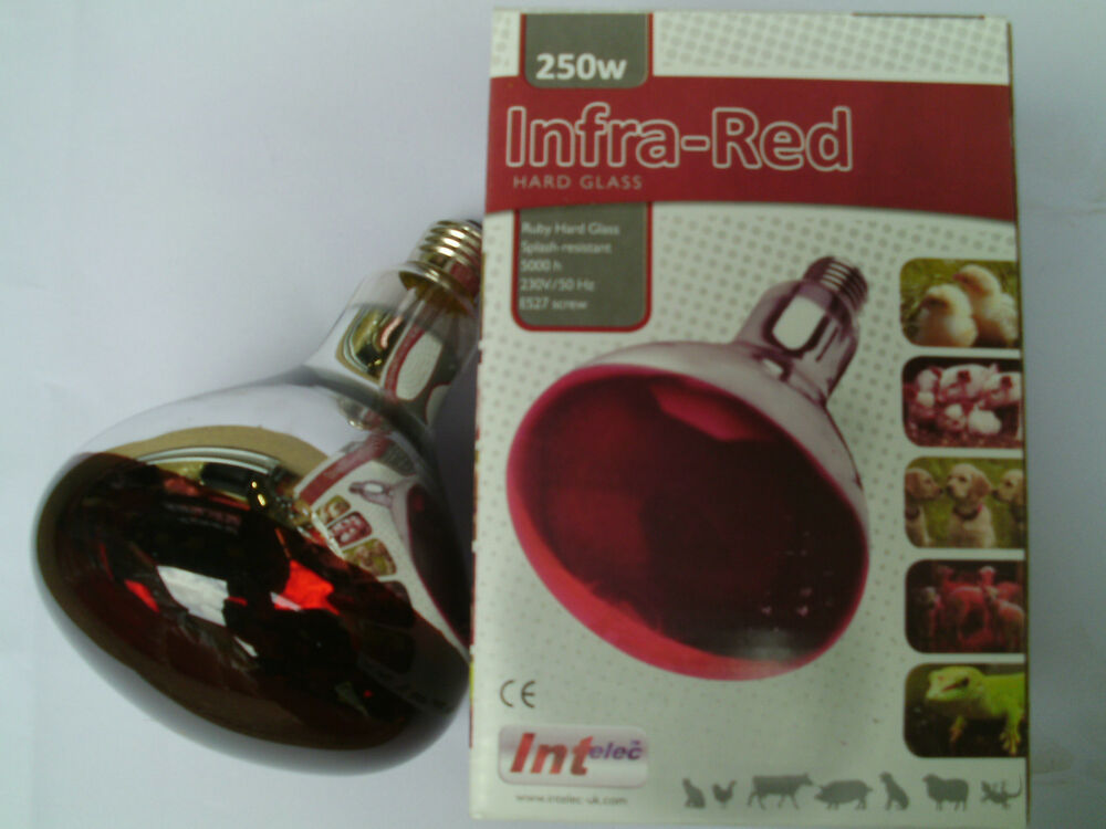 2xinfa red heat lamp bulb for poultry brooder chicks puppies pigs. Black Bedroom Furniture Sets. Home Design Ideas