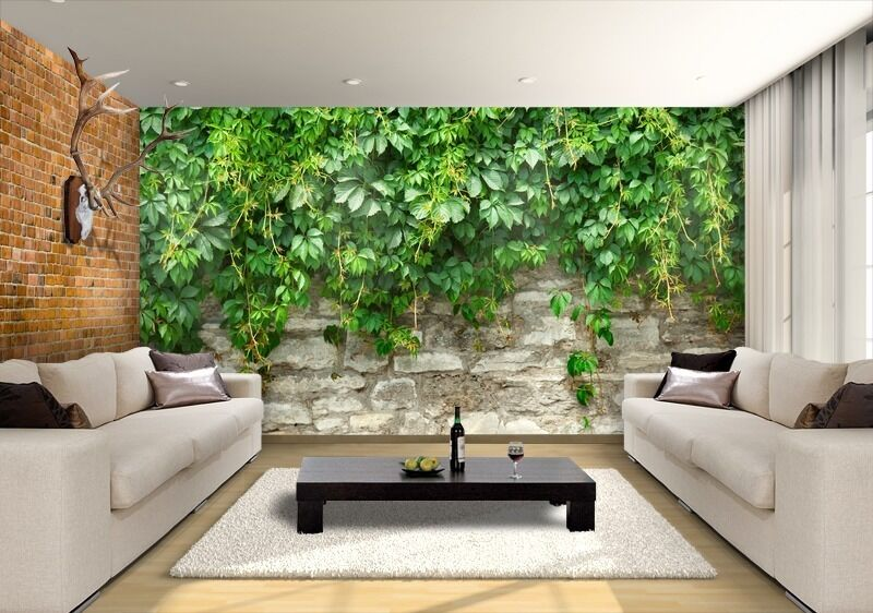 wall removable sticker green grape mural ebay. Black Bedroom Furniture Sets. Home Design Ideas