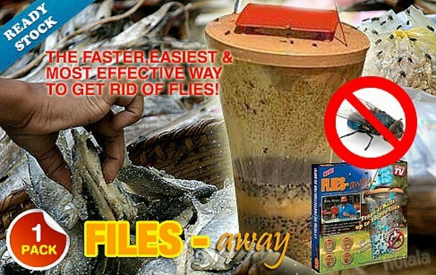 how to make fly trap bait