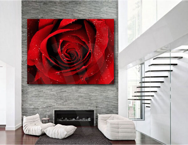 Red rose flower canvas art poster print home wall decor ebay for Rose home decorations