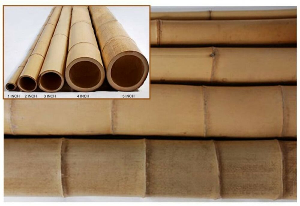 Bamboo poles choose from diameters and lengths ebay